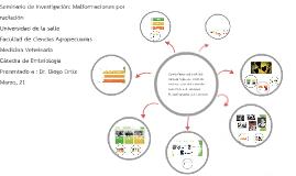 Copy of Seminario de investigación: Malformaciones por radiación