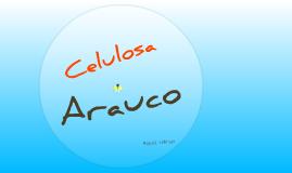 BTS - Arauco
