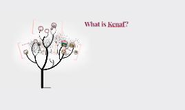 What is Kenaf?