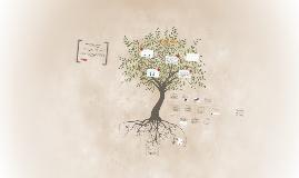 Copy of Diseño de un programa de minimización económica de impactos