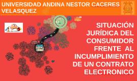 SITUACION JURIDICA DEL CONSUMIDOR FRENTE  AL INCUMPLIMIENTO