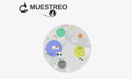 C - MUESTREO