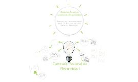 Desarrollo Sustentable en CFE