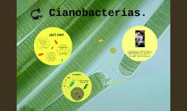 Cianobacterias.