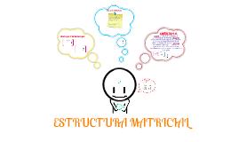 Copy of ESTRUCTURA MATRICIAL