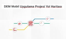 DEM Project Road Map