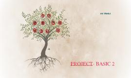 PROJECT- BASIC 2