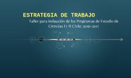 ESTRATEGIA DE TRABAJO