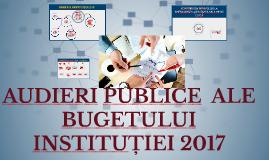 AUDIERI PUBLICE ALE BUGETULUI INSTITUȚIEI 2017