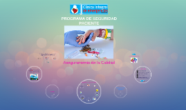 Copia de Copy of PROGRAMA DE SEGURIDAD PACIENTE
