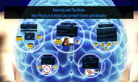 Copy of Exercise and The Brain