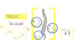 Copy of Orthotic options for children with Myelomeningocele