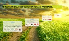 BOSQUE MIXTO, BOSQUE DE CONÍFERAS Y PASTIZALES.