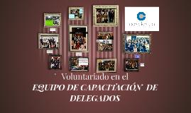 Voluntariado en el equipo de DELEGADOS
