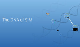The DNA of SIM
