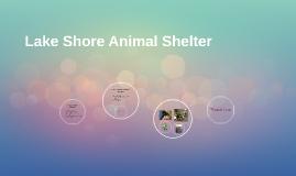 Lake Shore Animals