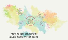 Copy of Plan de vida ignaciano:
