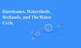 Hurricanes, Wetlands, and The Water Cycle