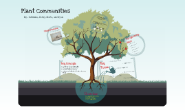 Plant Communities