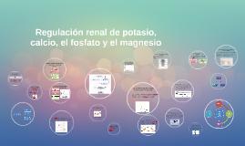 Regulación renal del potasio, el calcio, el fosfato y el mag