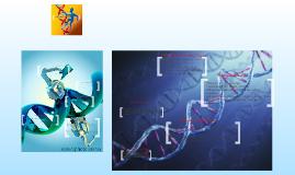 Copy of DNA Damage and Repair