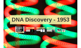 DNA Discovery - 1953