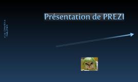 Copy of Presentation of the tools PREZI