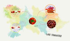 Spanish Food Presentation