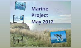 marine project