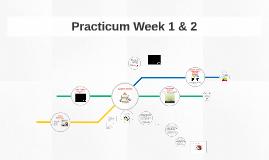 2017 Practicum Week 1 & 2