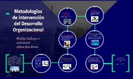 Metodologias de intervencion del Desarrollo Organizacional