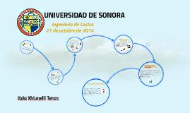 UNIVERSDAD DE SONORA