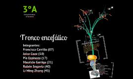Copy of Tronco Encefálico