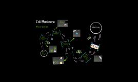 Biology: Cell Membrane