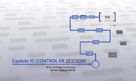 Capitulo 10 (CONTROL DE GESTION)