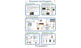2-Cell Structure & Support