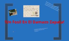 Focil De La Era Cuaternaria enconrado En el Damaso Zapaa