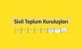 SİVİL TOPLUM KURULUŞLARI Cansu Topaloğlu