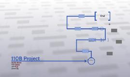 110B Project