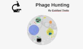 Phage Hunting