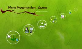 Stem Cell Presentation