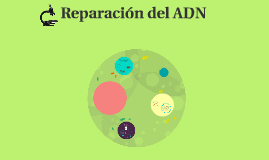 Copy of Reparacion del ADN