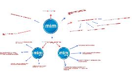 Copy of MiM- media i młodzież