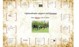 Optimalisatierapport stal Bosman