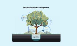 Copy of Auditoria de los Pasivos a largo plazo