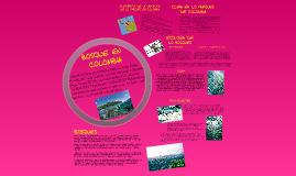 Copy of bosques en colombia