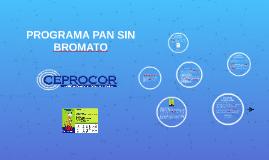 PROGRAMA PAN SIN BROMATO