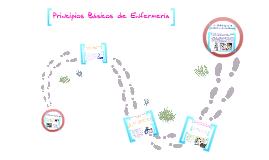 Copy of Principios basicos de enfermeria