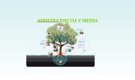 ADULTEZ INICIAL Y MEDIA