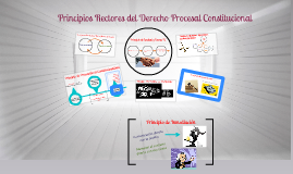 Copy of principios rectores del Derecho Procesal Constitucional